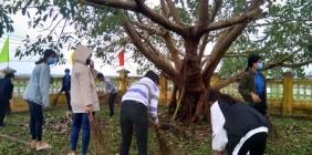Lao động tình nguyện tại Khu tưởng niệm Bàu Bàng